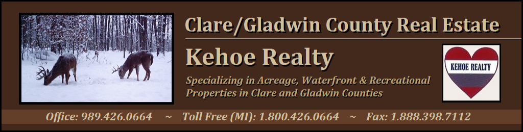 Clare and Gladwin County Real Estate, Michigan